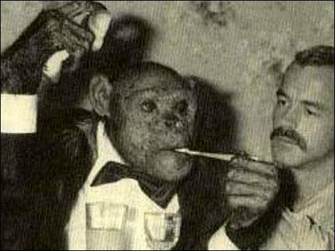 ヒューマンジーこと「オリバー君」が死去、「人間とチンパンジーの中間」として話題を集める | BUZZAP!(バザップ!)