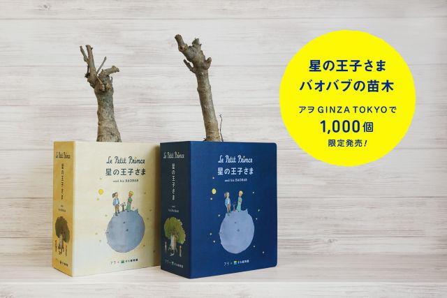 【悲報】樹齢150年の木を勝手に引き抜いたことで有名な西畠清順氏、今度は『星の王子さま』に自分を登場させる続編を制作する  [922647923]->画像>28枚
